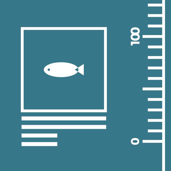 釣果共有のイメージ図